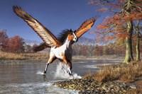 Autumn Pegasus Fine Art Print