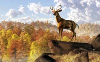 Buck Over Autumn Valley Fine Art Print