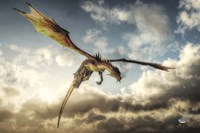 Flying Dragon Death From Above Fine Art Print