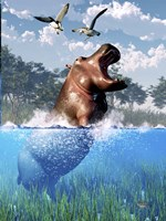 Lunging Hippo Fine Art Print