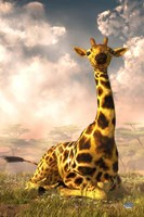 Sitting Giraffe Fine Art Print