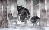 Werewolf And Wolves Fine Art Print