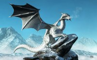 Winter Dragon Fine Art Print
