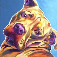 Pit Bull - Dozer Fine Art Print
