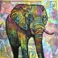 Elephant Torn Fine Art Print