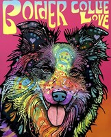 Border Collie Love Fine Art Print