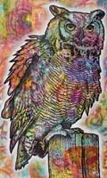Owl Perch Fine Art Print