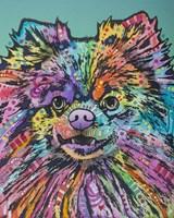 Gus Fine Art Print