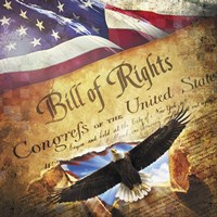 Bill of Rights Eagle Bursting Out Fine Art Print