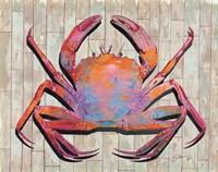 Contemporary Crab I Fine Art Print