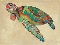 Contemporary Turtle II Fine Art Print