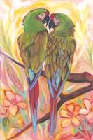 Parrot Tango Fine Art Print