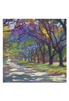 Sunny Oaks Fine Art Print