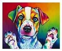 Jack Flash Fine Art Print