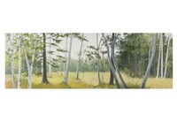 Birch Field Fine Art Print