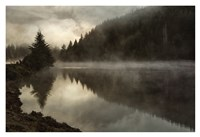Coos Fog Fine Art Print