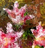 Stargazer Lilies 1 Fine Art Print