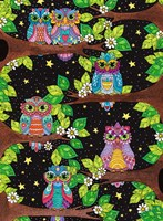 Night Owls 11 Fine Art Print