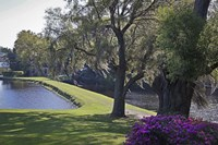 Middleton Place 3, SC Fine Art Print