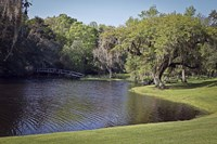 Middleton Place 4, SC Fine Art Print