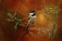 Autumn Day Chickadee Fine Art Print
