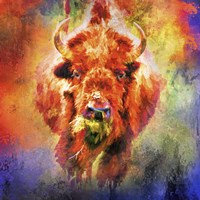 Jazzy Buffalo Fine Art Print