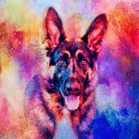 Jazzy German Shepherd Fine Art Print