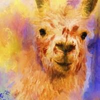 Jazzy Llama Fine Art Print