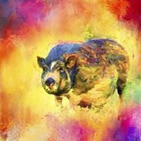 Jazzy Pig Fine Art Print