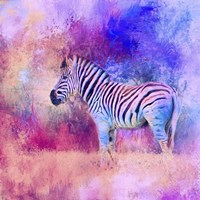 Jazzy Zebra Pink And Purple Fine Art Print