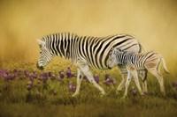 Through The Meadow Fine Art Print