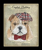 English Bulldog Fine Art Print