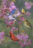 Birds and Blossoms Fine Art Print
