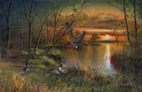 Evening Refuge Fine Art Print