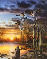 Evening Splendor Fine Art Print