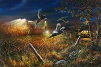 Field Of Dreams Fine Art Print