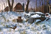 Winter Haven Fine Art Print