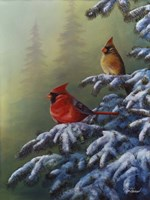 Winter Refuge - Cardinal I Fine Art Print