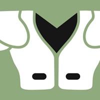Football Close-ups - Shoulder Pads Fine Art Print