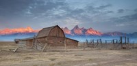 Mormon Row Sunrise 2 Fine Art Print