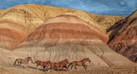 Badlands Fine Art Print