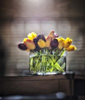 Cut Tulips On Edge Of Table Fine Art Print