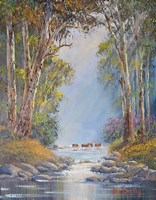 Misty Morning Barrington Fine Art Print