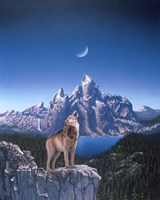 Moon Wolf Fine Art Print