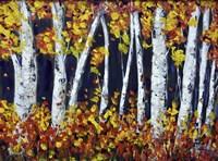 Bright Colours Fine Art Print