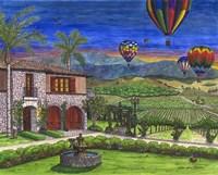 Vineyard Balloons Fine Art Print