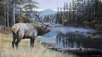 Elk River Fine Art Print