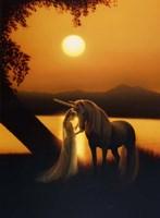 Enchanted Evening Fine Art Print
