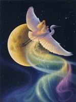 Flight Of The Aurora Fine Art Print