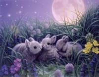Moon Babies Fine Art Print